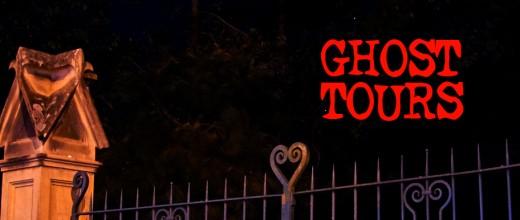 GT mailchimp banner 2